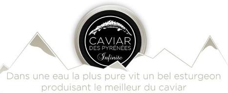 Caviar des Pyrénées - Caviar bio de montagne | Caviar | Scoop.it