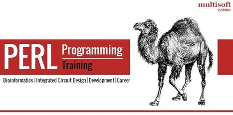Launch Yourself into Evergreen Careers with Perl Programming Knowledge | industrial training | Scoop.it