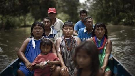 Venezuela. Rencontrez les Indiens Waraos, le peuple des pirogues | Venezuela | Scoop.it