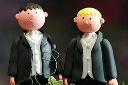 Gay marriage bill 'yes' | The Sun |News|Politics | Should gay marriage be legal in Australia? | Scoop.it
