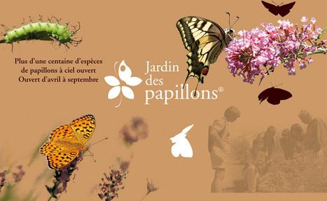 Bienvenue au Jardin des papillons | Roshirached | Scoop.it