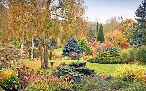 Dell Garden: a living library for good plants - Telegraph   Help Save Our Beautiful Bees and Wildlife.Together we can make a difference.   Scoop.it
