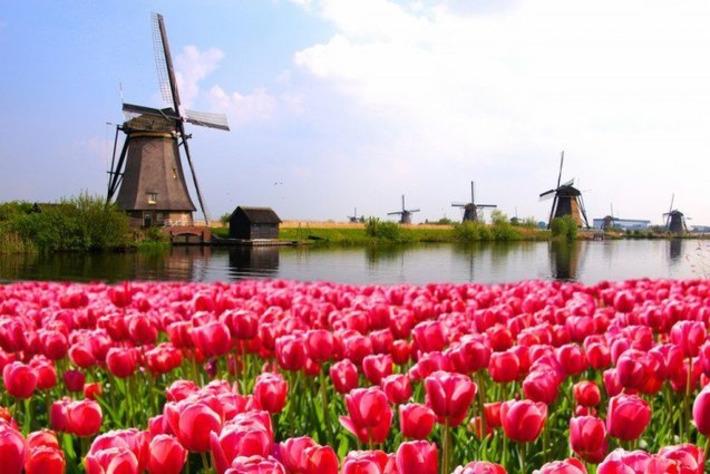 "New Documentary ""The Bitcoin Gospel"" Shows Bitcoin to the Netherlands - CryptoCoinsNews | money money money | Scoop.it"