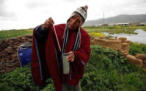 Age-old indicators under stress in high Bolivia | Sustain Our Earth | Scoop.it