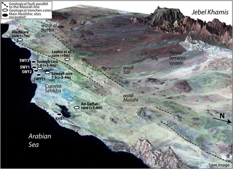 The dynamics of mangrove ecosystems, changes in sea level and the strategies of Neolithic settlements along the coast of Oman (6000–3000cal.... | Indian Ocean Archaeology | Scoop.it