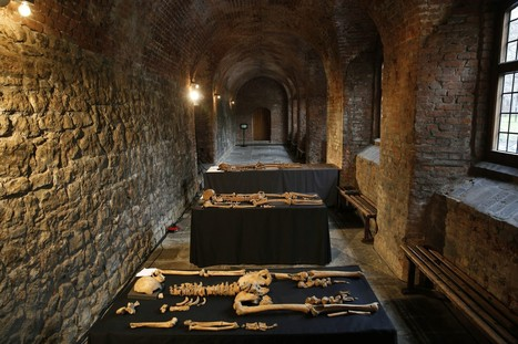 London skeletons reveal secrets of the Black Death | Plague on both your houses | Scoop.it