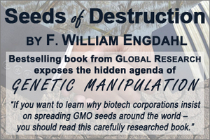 GMO Scandal: The Long Term Effects of Genetically Modified Food on Humans | Science | Scoop.it