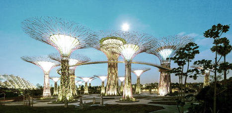 Singapore's Supertrees Light Up The Night | Vertical Farm - Food Factory | Scoop.it
