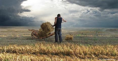 L'agroalimentaire: un secteur qui cherche à recruter | Agro Media.fr | Actu Boulangerie Patisserie Restauration Traiteur | Scoop.it
