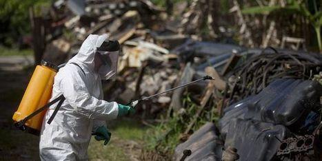 Les autorités brésiliennes ne repousseront pas les JO à cause de Zika | Planete DDurable | Scoop.it
