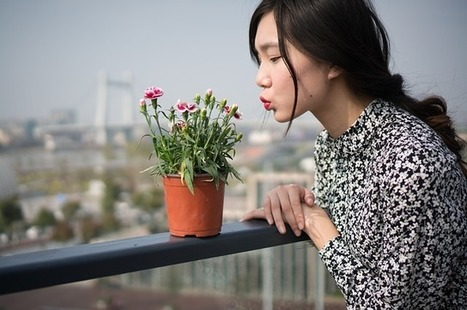7 Ways to Grow Flowers | fashionukstyle | Scoop.it