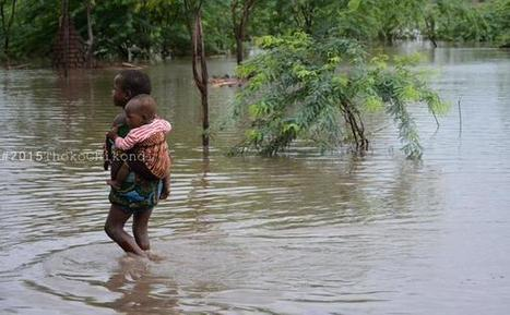 Cashgate haunts Malawi, donors shun govt. in flood disaster relief - Malawi24 | NGOs in Human Rights, Peace and Development | Scoop.it