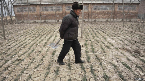 All dried up | Water issues in China | Scoop.it