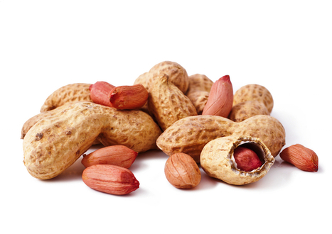 Eating Nuts Linked to Lower Risk of Colon Cancer | Anatomy & Physiology articles | Scoop.it