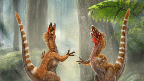 "Feathered dinosaur death site could be an ""animal Pompeii"" 