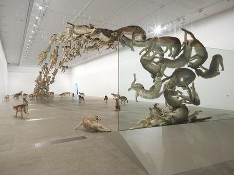 Cai Guo-Qiang falls back to Earth at GOMA, Australia - International Art Portal Huma3 | Modern Art China : Contemporary Chinese Art | Scoop.it