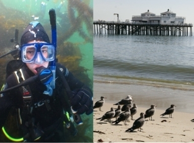 Local Boy Scout Organizes Malibu Ocean and Beach Clean-Up for His Eagle Scout Project   Eagle Scout Project   Scoop.it