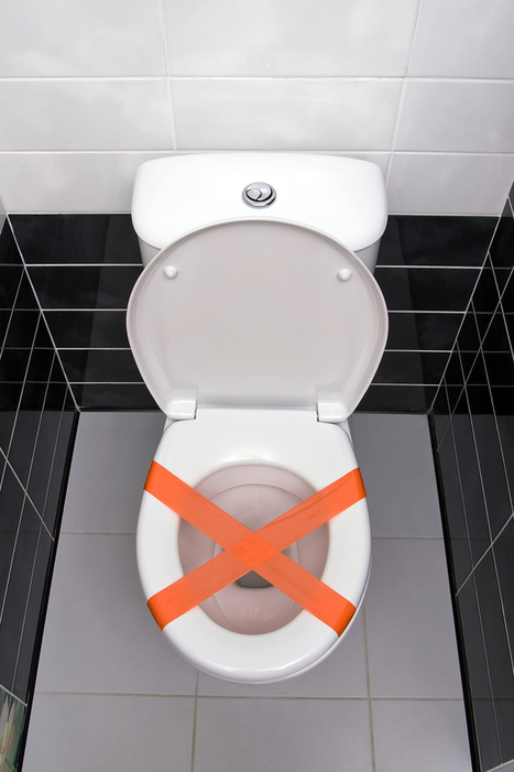 Seven Items You Should Never Flush Down the Toilet - Levine & Sons | Plumbing | Scoop.it