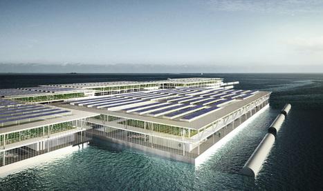 Cette ferme solaire flottante pourrait changer l'agriculture | Dans l'actu | Doc' ESTP | Scoop.it
