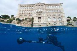 PHOTOS - Les premières images de Google Ocean en Méditerranée   Visite virtuelle   Scoop.it