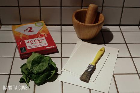 L'anthotype ou comment faire un tirage avec des feuilles d'épinard | Sténopé | Scoop.it