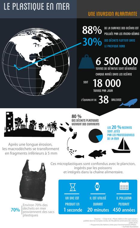 [infographie] Comment le plastique détruit les océans   Toxique, soyons vigilant !   Scoop.it