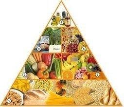Dieta vegana: alimentos permitidos | Nutrición | VeggieLife&Sport | Scoop.it
