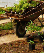 Hem - Hållbar utveckling i skolan | Hållbar utveckling 2013 | Scoop.it