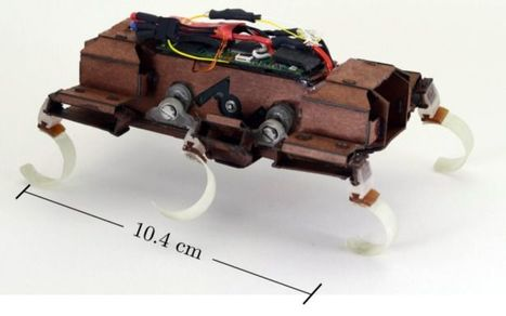 Le robot X2-VelociRoACH bat un record de vitesse | Ressources pour la Technologie au College | Scoop.it