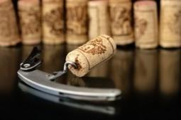 Vinhos nobres devem ter rolhas de cortiça, dizem 80% dos brasileiros | Wired Wines of Alentejo | Scoop.it