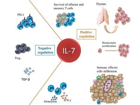 the evolution and mechanism of immunological The idea that immune-related mechanisms may have contributed to the.