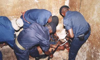 Sécurisation de Kinshasa : des progrès enregistrés mais beaucoup reste à faire | CONGOPOSITIF | Scoop.it