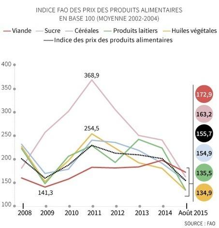 Effondrement du prix des denrées alimentaires   Nourrir-Manger   Scoop.it