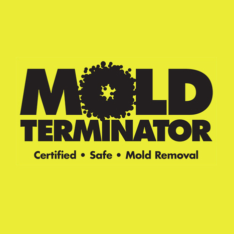 Commercial Mold Removal | Commercial Mold Removal | Scoop.it
