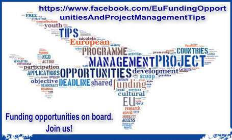 Call for proposals for the establishment of 4-year framework partnership agreements with EU-level NGO networks active in the promotion of social inclusion and poverty reduction or active in the pro... | Sentinelle dell'Energia | Scoop.it