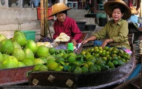 El mercado visto desde los vendedores ambulantes alrededor del mundo [Fotos] - Sabrosía | Cum Panem | Scoop.it