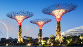 Solar-powered 'supertrees' breathe life into Singapore's urban oasis - CNN.com | A2 World Cities | Scoop.it