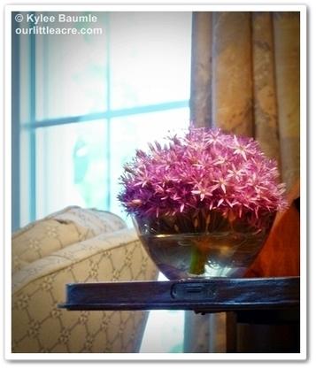 Our Little Acre: The Accidental Bouquet   Annie Haven   Haven Brand   Scoop.it