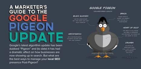 Infographie: La mise à jour Google Pigeon en détails   Référencement SEO SEA SMO   Scoop.it