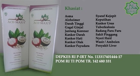 Agen Ace Maxs Di Jayapura Papua | obat gejala diabetes | Scoop.it