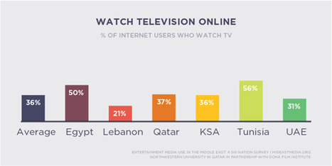 Mideast Media Study: Facebook Rules; Censoring Entertainment OK | Digital Cinema - Transmedia | Scoop.it