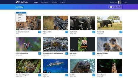 Twitter Media Studio marche sur les plates-bandes de Youtube - Influenth | Freewares | Scoop.it