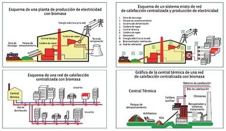 Esquemas de una central de biomasa | Energias Renovables | Energía a partir de Biomasa | Scoop.it