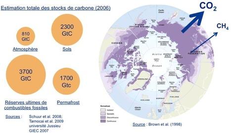 Notre avenir climatique se joue-t-il en Arctique ?   Chuchoteuse d'Alternatives   Scoop.it