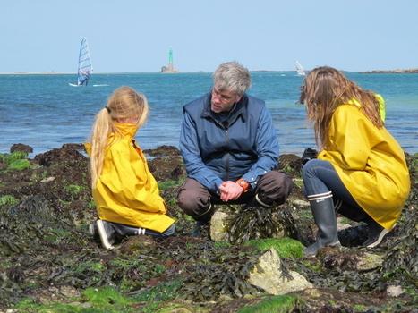Science participative : organisez une sortie BioLit sur le littoral | Marmailles.com | Scoop.it