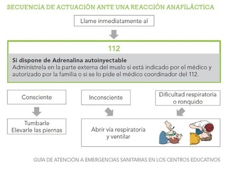 Primeros auxilios en el cole: Reacción alérgica grave (Anafilaxia) - PediaTic | PROYECTO CESA | Scoop.it