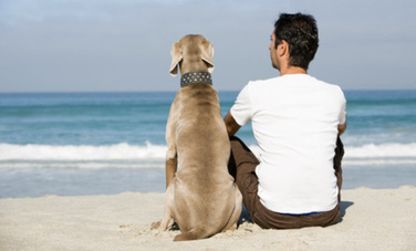 9 Ways Animal Friends Make Us Better Humans - Care2.com | Animals R Us | Scoop.it