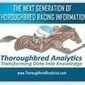 Increase Your Chances of Winning at Horse Race Betting By Empowering Yourself   Thoroughbred Analytics   Scoop.it