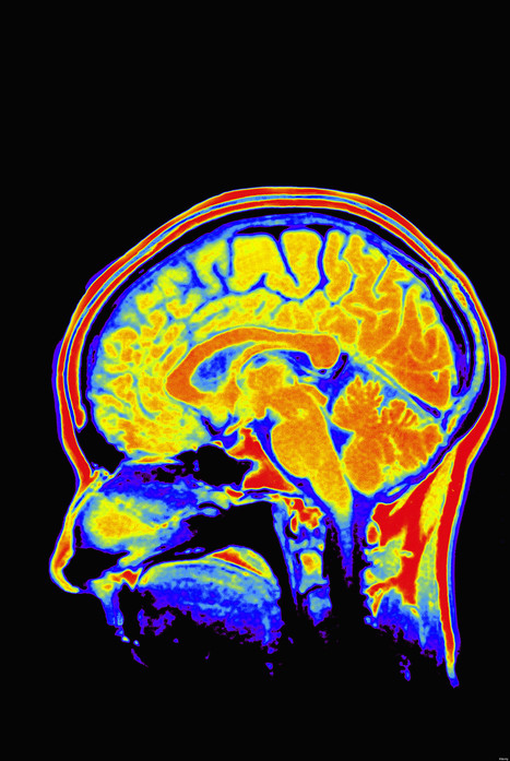 How to Inspire Your Brain | Creatively Aging | Scoop.it