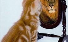 5 Τρόποι Για Να Αυξήσεις Την Αυτοπεποίθηση Σου Άμεσα – Crete2day | ΩΡΙΜΟΣ ΚΑΡΠΟΣ | Scoop.it